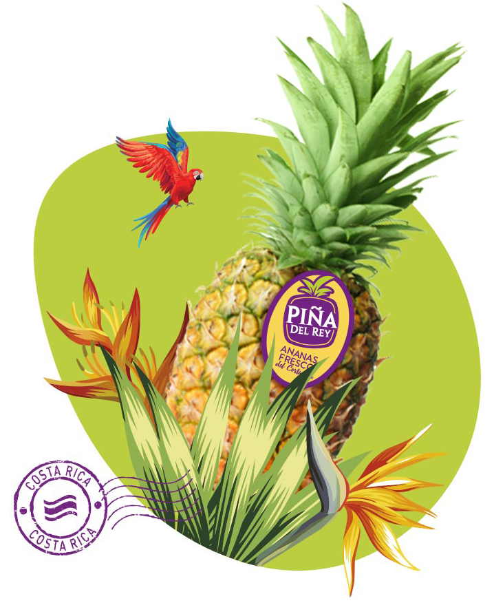 Ananas product